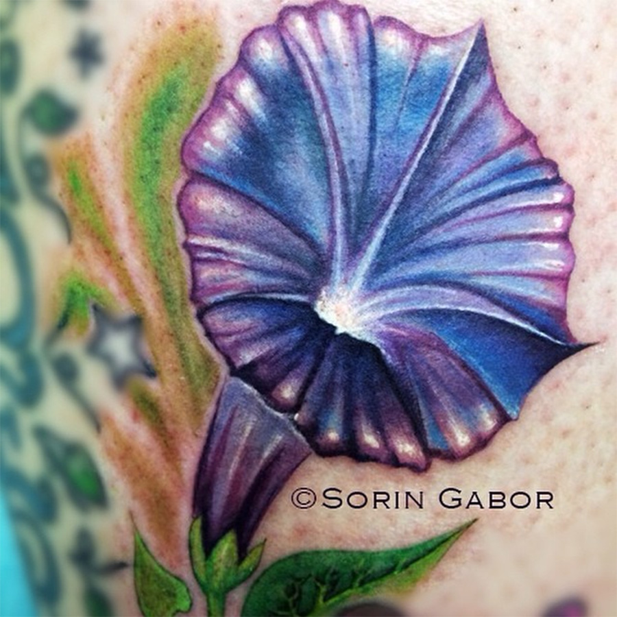 morning glory tattoo
